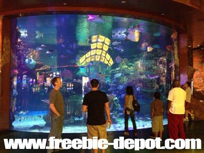 Free Las Vegas Stuff Aquarium Silverton