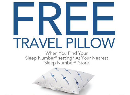 FREE Travel Pillow