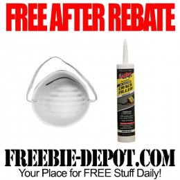 Free-After-Rebate-Dust-Mask
