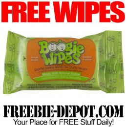 Free-Boogie-Wipes