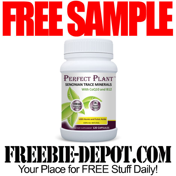 Free-Sample-Perfect-Plant