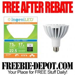 Free-After-Rebate-LED-LIght-Bulb