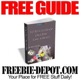 Free-eBay-Guide