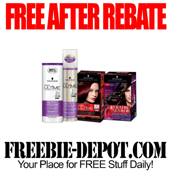 Free-After-Rebate-Schwartz