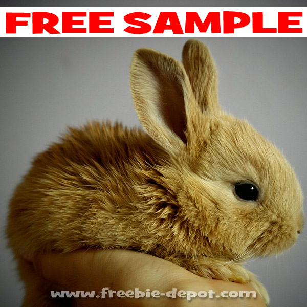 Free-Sample-Bunny