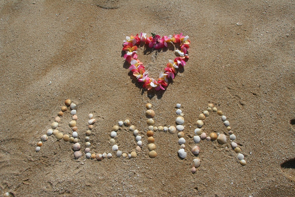 FREE Hawaii Visitor's Guide & Official Vacation Planners