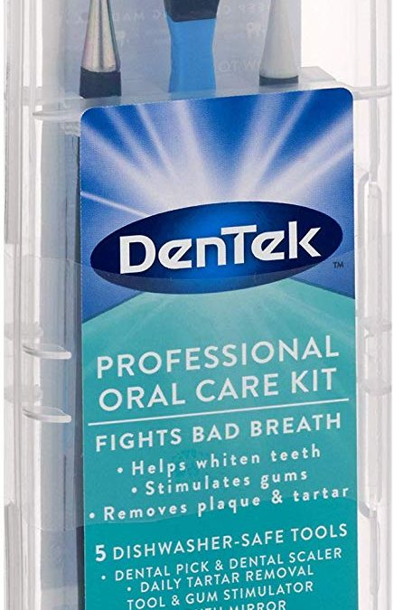 DenTek Professional Oral Care Kit ONLY $2.76