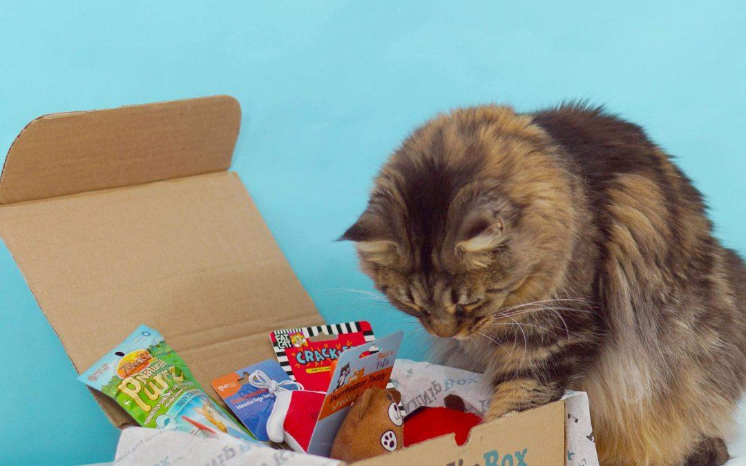 HALF OFF Happy Cat KitNipBox – Cat Toys, Treats and Goodies