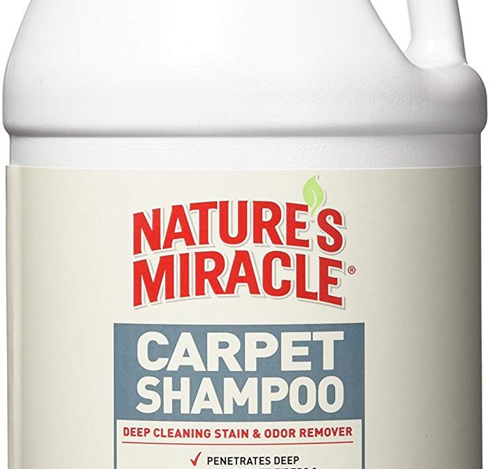 Nature's Miracle Deep Cleaning Pet Stain and Odor Carpet Shampoo ONLY $4.98 Was $20.76