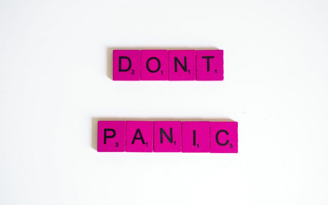 FREE BOOK – Don't Panic! A Practical Guide to Dealing with Fear, Anxiety, Panic, and Public Speaking
