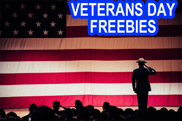 🇺🇸 FREE Stuff for Veterans Day 2020 – 100+ Military Freebies – Thank You Vets! FREE Offers for Veterans and Active Military