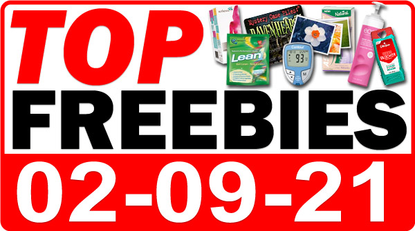 FREE Reusable Grocery Bag + MORE Top Freebies for February 9, 2021